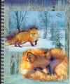 Note_fox_2