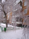Winter2010021