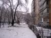 Winter2010071