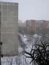 Window031