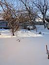 Winter_day031