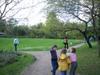 Jap_garden_spring2
